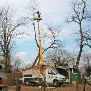elagage-arborie-entretien-parcs-jardins-1