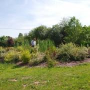 plantation-arborie-entretien-parcs-jardins-1