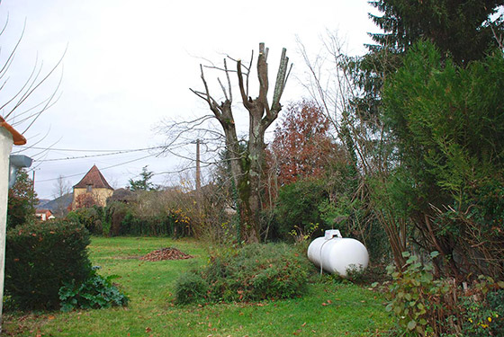 elagage-arborie-entretien-parcs-jardins-32