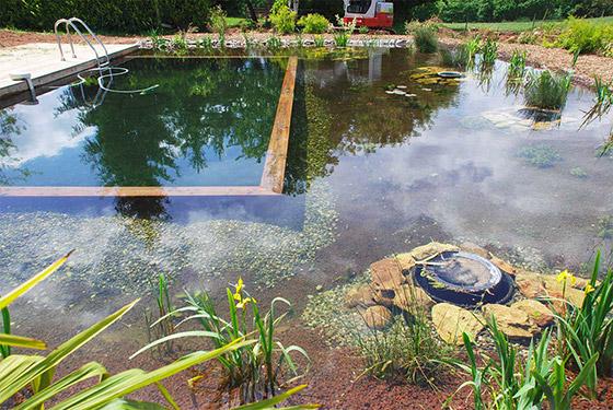 piscine-arborie-entretien