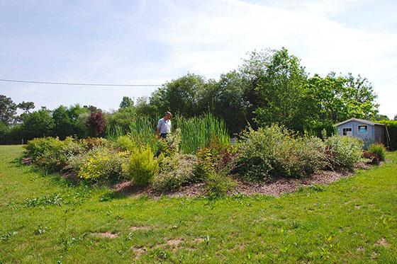 plantation-arborie-entretien-parcs-jardins-12