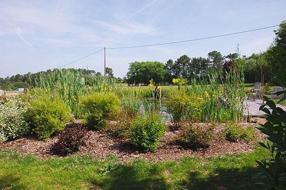 plantation-arborie-entretien-parcs-jardins-22