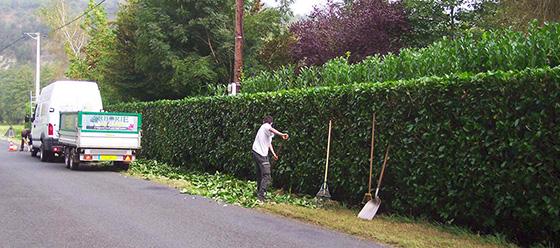 Arborie espaces verts les professionnels des espaces for Jardins et services