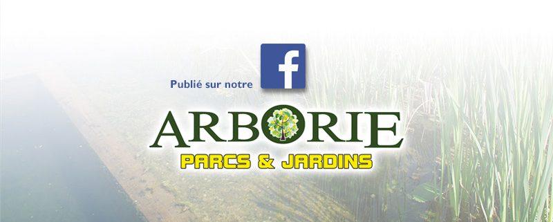 facebook-2-arborie-entretien-parcs-jardins-amenagement