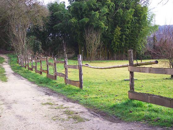 cloture-arborie-entretien-parcs-jardins-32